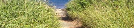 chemin sable