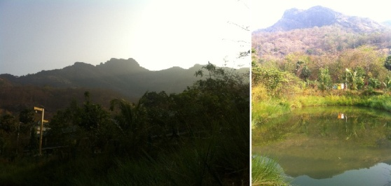 Malampuzha etang montagne